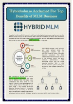 Hybrid MLM Software - PowerPoint PPT Presentation