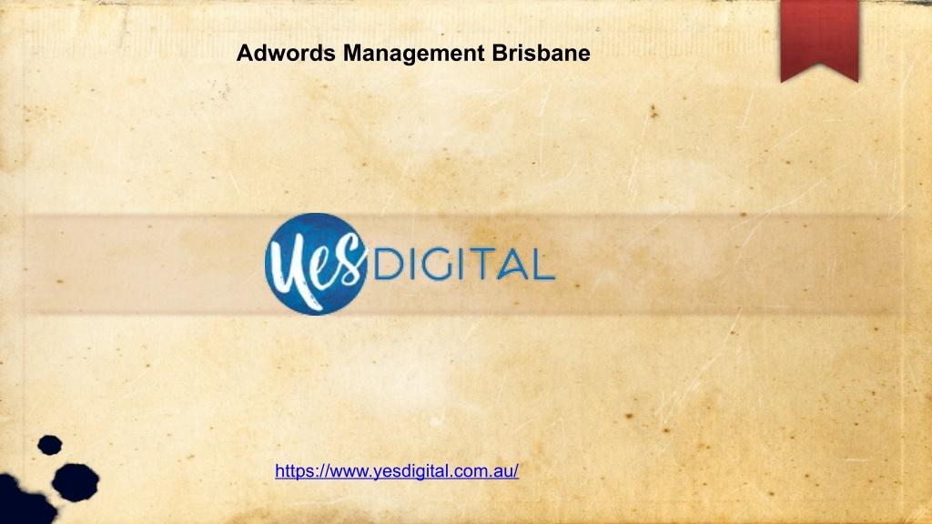 Adwords Management Brisbane